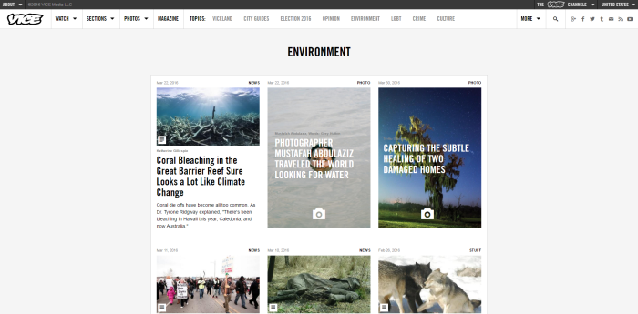 Environment VICE United States