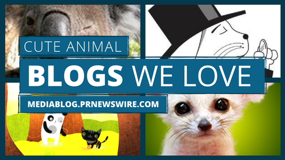 cute animal blogs