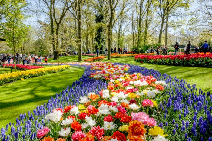 Dutch Design in Flowers at the Keukenhof Opening