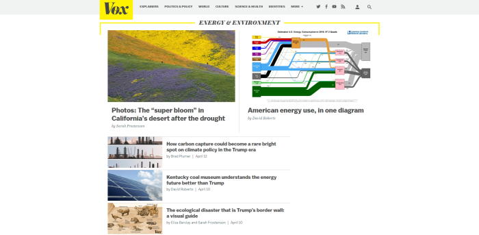Vox Energy and Environment