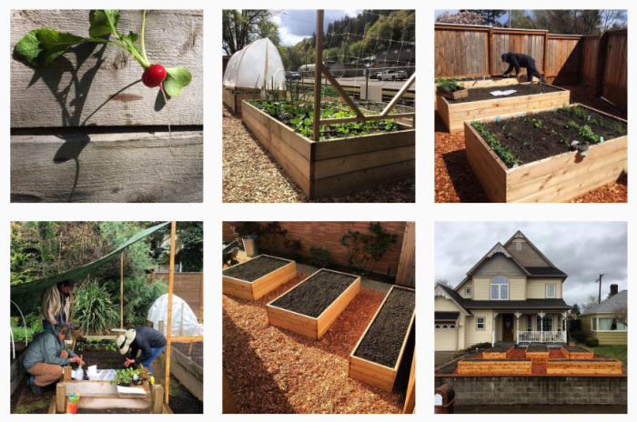 Portand Edible Gardens on Instagram