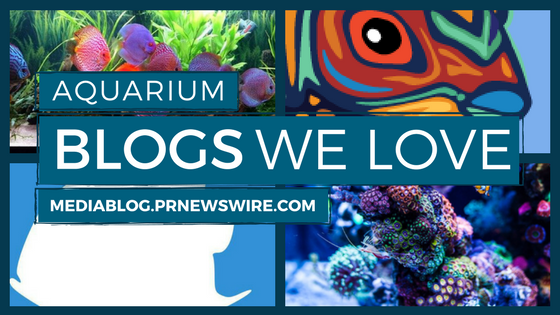 Aquarium Blogs