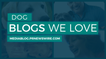 Blog Profiles Dog Blogs