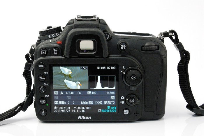 Nikon D7100 camera screen with image of ducks