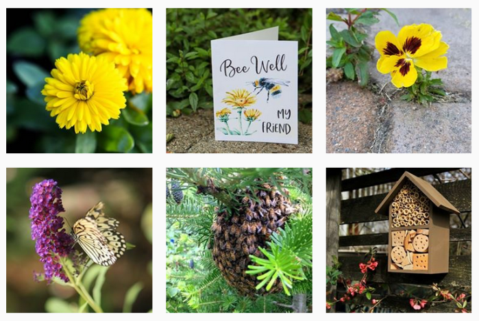 6 recent posts from @garden_therapy on Instagram