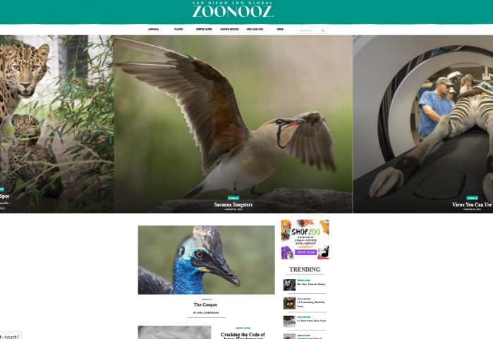 San Diego Zoo Global ZOONOOZ site