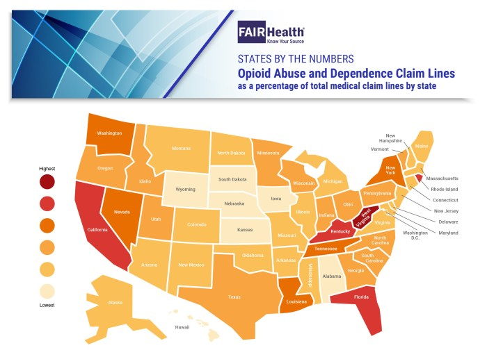 FAIR Health: Opioid Abuse and Dependence Claim Lines (as a percentage of total medical claim lines by state) - State Map