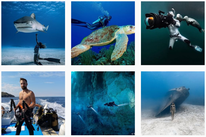 Diving Blogs We Love: 6 recent posts from @spotmydive on Instagram