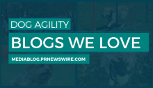 Dog Agility Blogs We Love - mediablog.prnewswire.com
