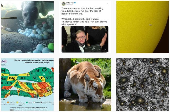 STEM Blogs We Love: @iflscience on Instagram