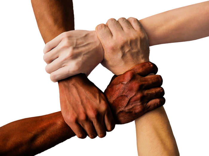 Diverse group of people - four hands gripping each other's wrists