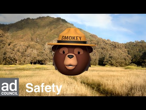 Smokey Bear safety image in front of a mountain landscape