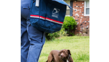 postal worker walking toward a house with a dog in the front yard