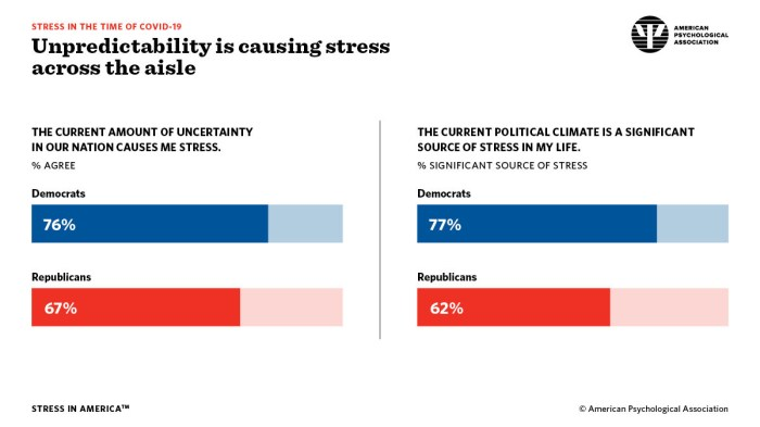 "American Psychological Association ""Stress in the Time of COVID-19"" infographic"