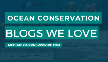 Ocean Conservation Blogs We Love - mediablog.prnewswire.com